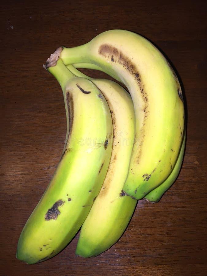 bananowy kanarek zdjęcie royalty free