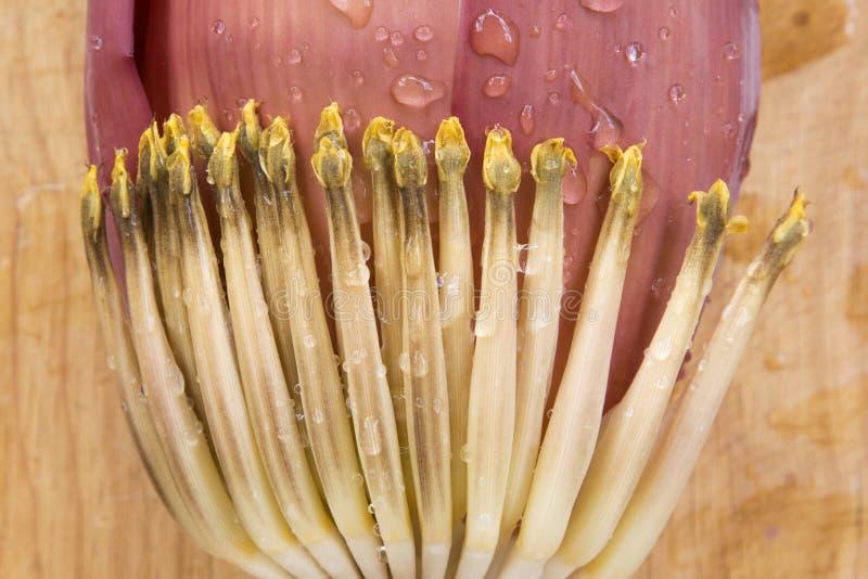 Bananowy okwitnięcie z wodą na drewnie obrazy stock