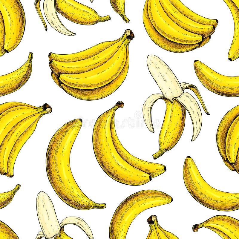 Bananowy wektorowy bezszwowy wzór Odosobniona ręka rysującej wiązki i łupy bananowego lata owocowy artystyczny styl ilustracja wektor