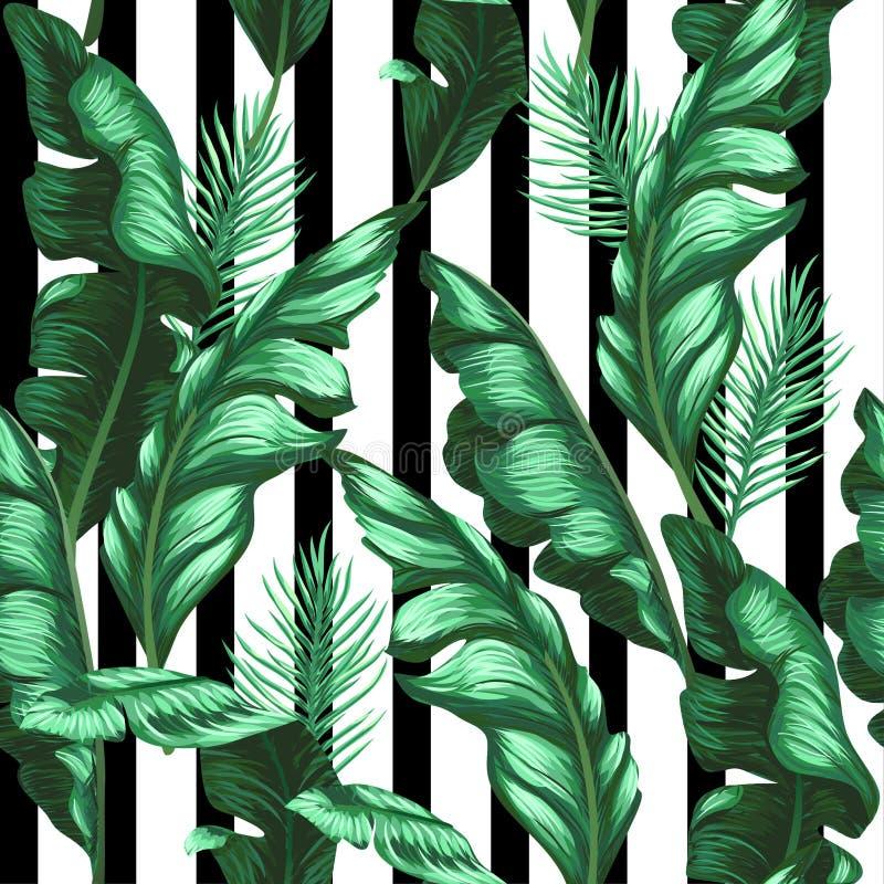 Banansidamodell tropisk bakgrund vektor stock illustrationer