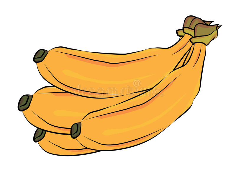 Banany ilustracyjni ilustracja wektor