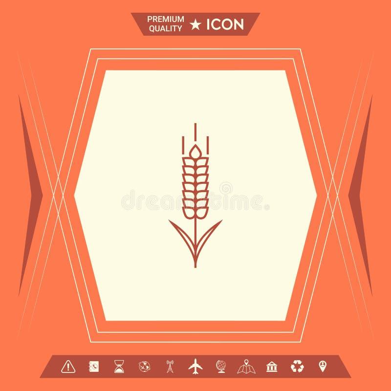 Banatki lub żyta spikelet ikona ilustracja wektor