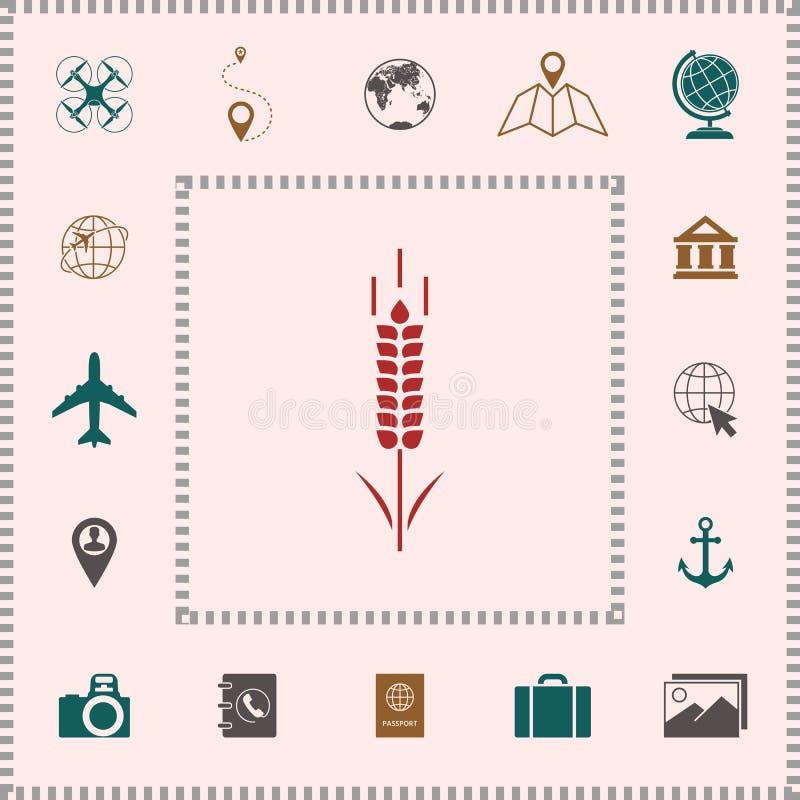 Banatki lub żyta spikelet symbol ilustracji