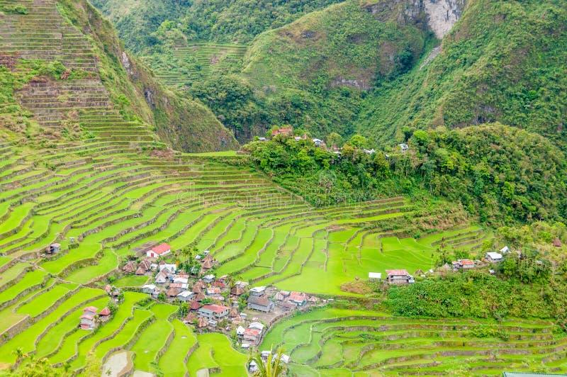 Download Banaue stock photo. Image of nature, rice, village, terraces - 30775998