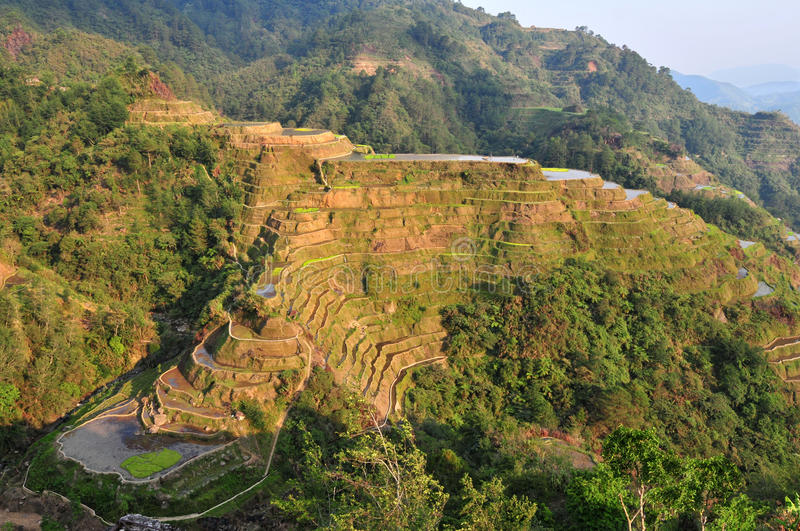 Download Banaue Rice Terraces stock photo. Image of icon, lines - 23650716