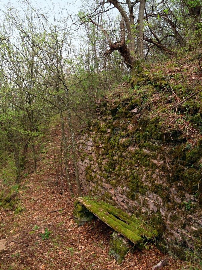 Banc abandonné dans la forêt photographie stock