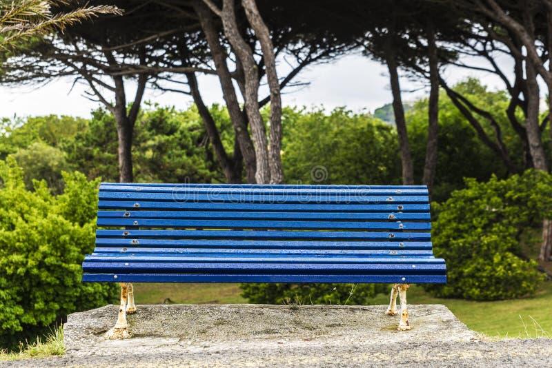 Banc bleu humide en parc image libre de droits