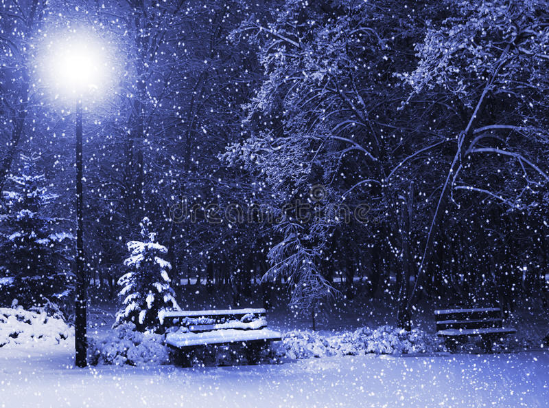 Banc, christmastree et lanterne photo libre de droits