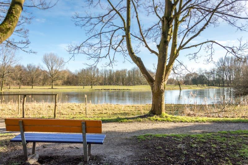 Banc de parc avec une vue photographie stock libre de droits