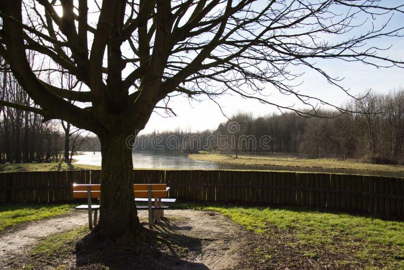 Banc de parc avec une vue image stock