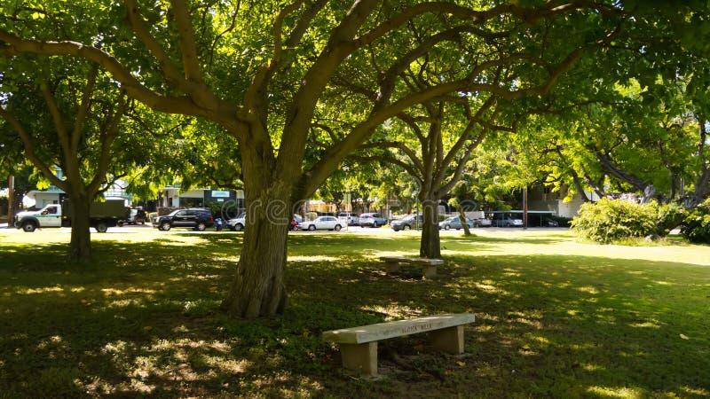 Banc de parc de Kapiolani photographie stock