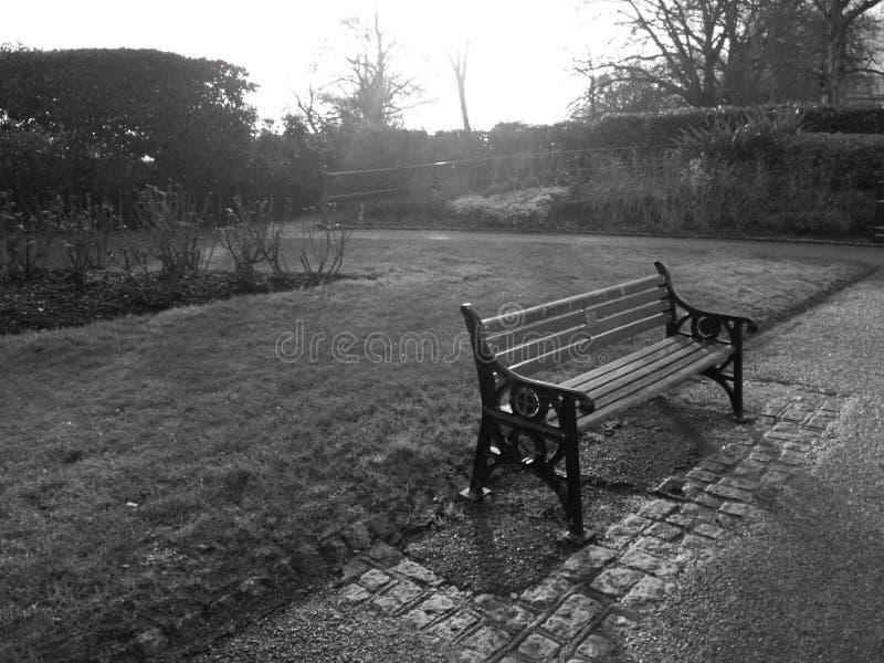 Banc de parc en noir et blanc photo libre de droits