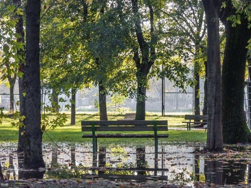 Banc de parc public, dans un arrangement rural entour? par nature photos stock