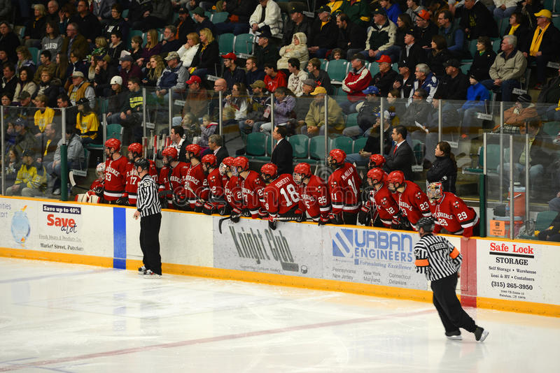 Banc de St Lawrence en match de hockey de NCAA images libres de droits
