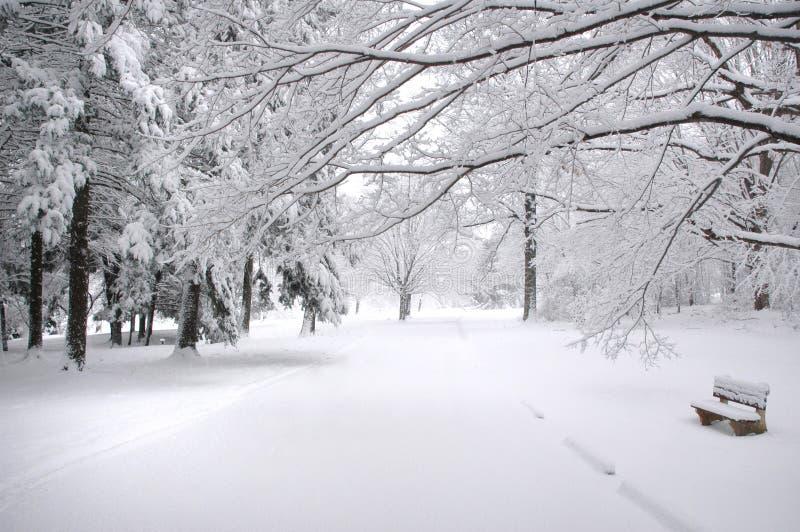 Banc de stationnement en hiver image stock