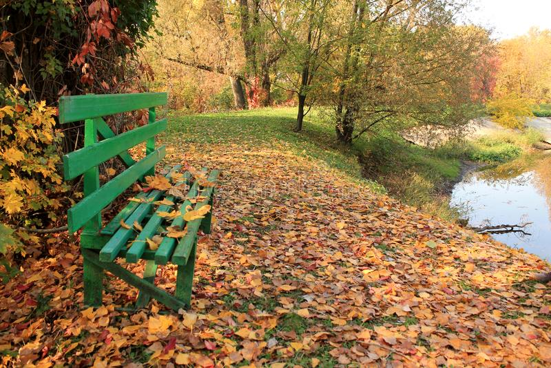Banc en bois dans la forêt près du lac sur le fond de l'autum coloré images stock