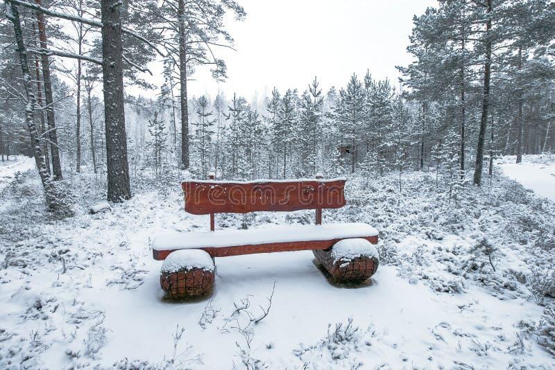 Download Banc En Bois En Parc D'hiver Photo stock - Image du snowflake, saison: 87707960