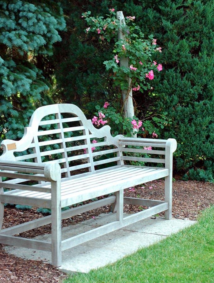 Banc en bois et roses roses photo stock