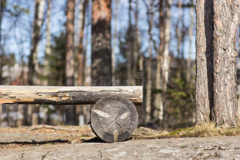 Banc en bois sur le rivage rocheux du lac, dans la forêt de fond images stock