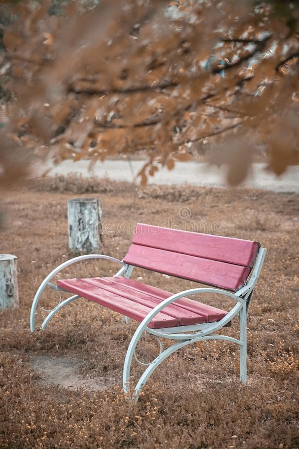 Banc en parc Bel endroit Autumn Landscape photos stock