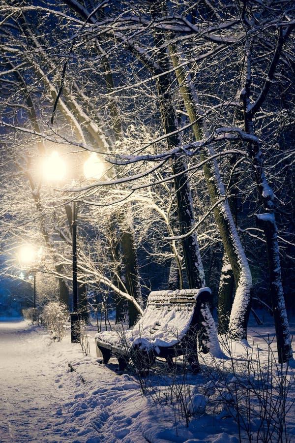 Banc en parc de nuit photo libre de droits