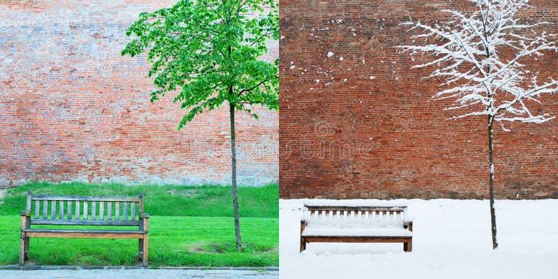 Banc et arbre au printemps et hiver de parc photos stock