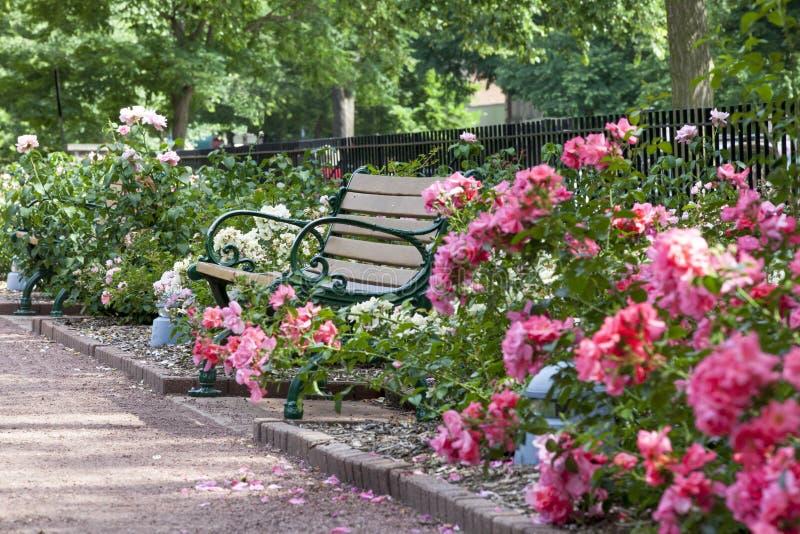 Banc et chemin chez Merrick Rose Garden photo stock