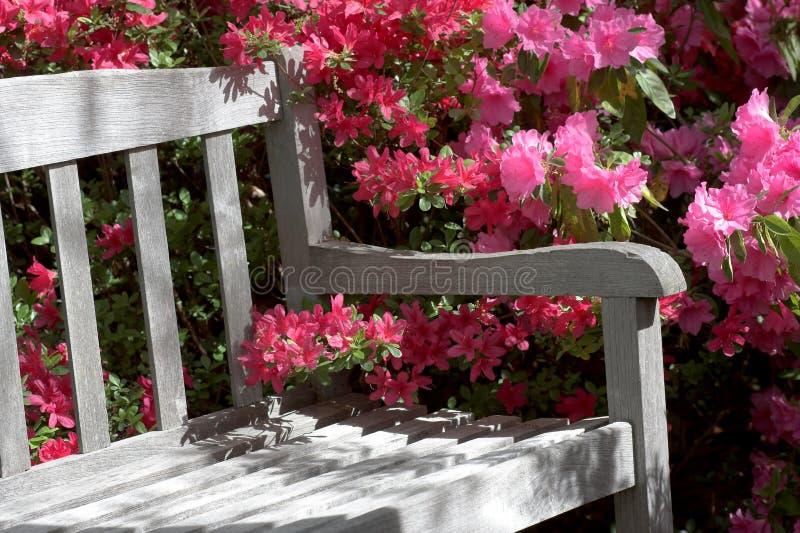 Banc et fleurs de jardin image libre de droits