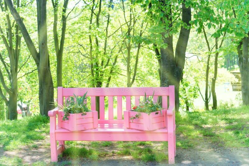 Banc rose en parc vert photographie stock libre de droits