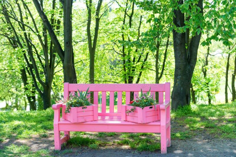 Banc rose en parc vert image stock