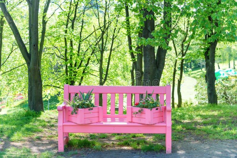 Banc rose en parc vert photos libres de droits