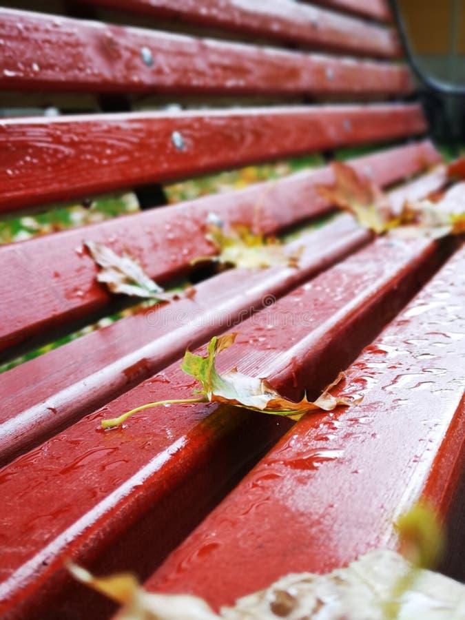 Banc rouge après la pluie photos libres de droits
