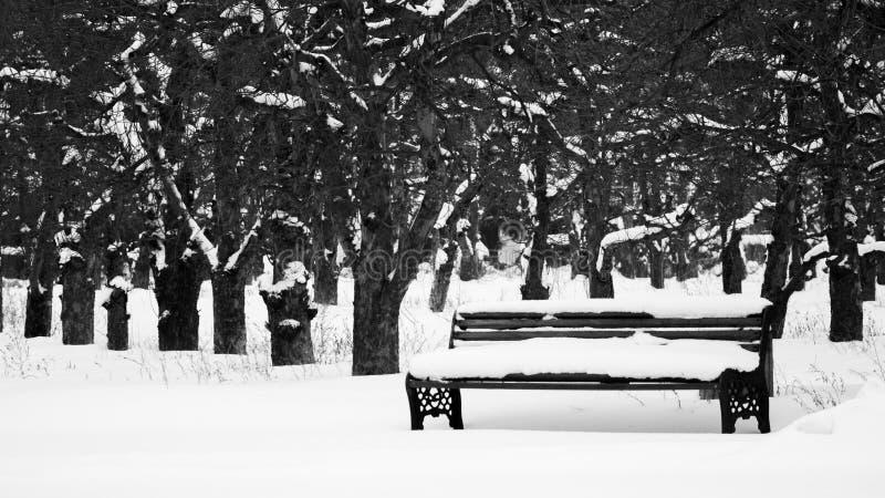 Banc sous la neige images stock
