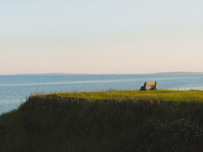 Banc sur la colline d'herbe verte image libre de droits