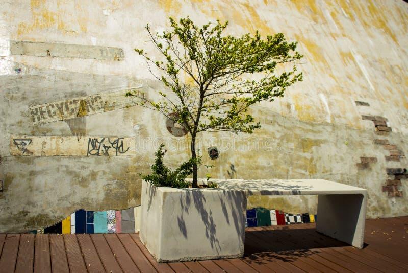 Banc unique d'ECO en parc photos libres de droits