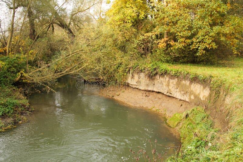 Banca insidiata del fiume fotografie stock