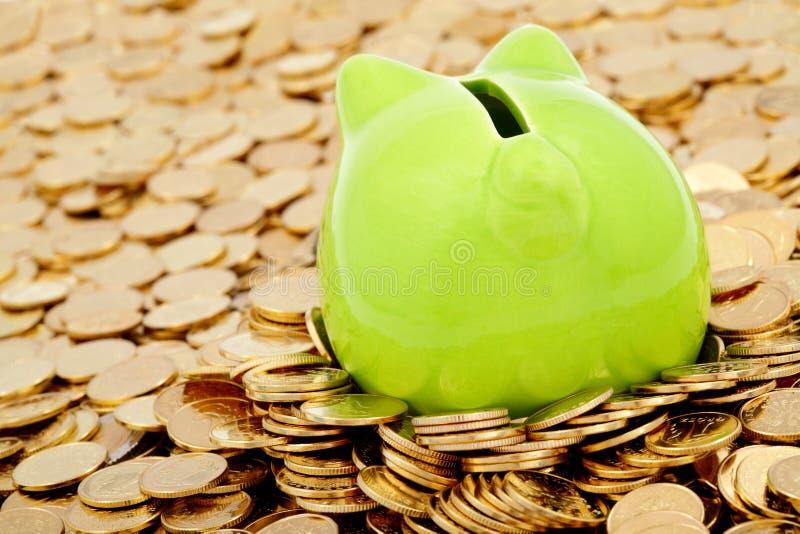 Banca piggy e mare verdi dei soldi dell oro