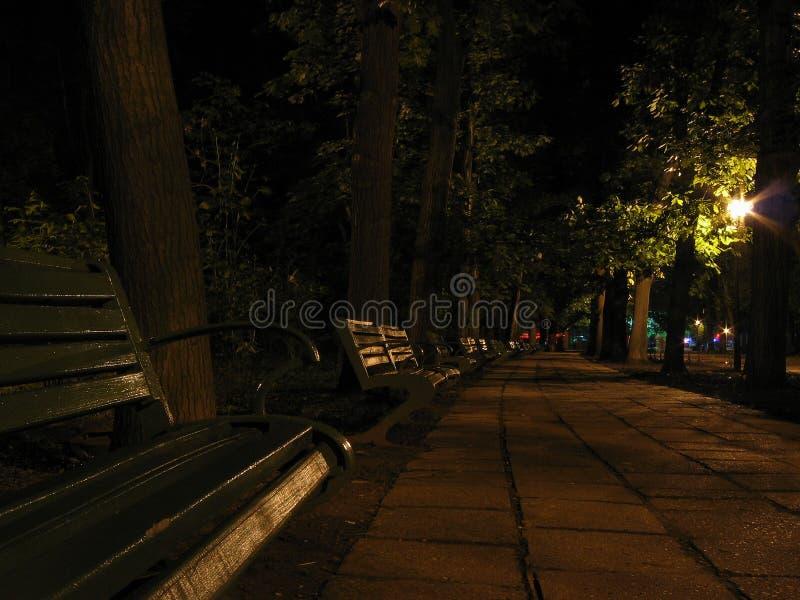 banch νύχτα στοκ φωτογραφίες