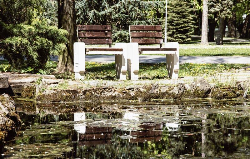 Banchi di legno che riflettono in acqua nel parco della città fotografia stock