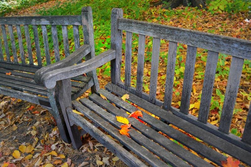 Banchi di parco con le foglie di caduta immagine stock