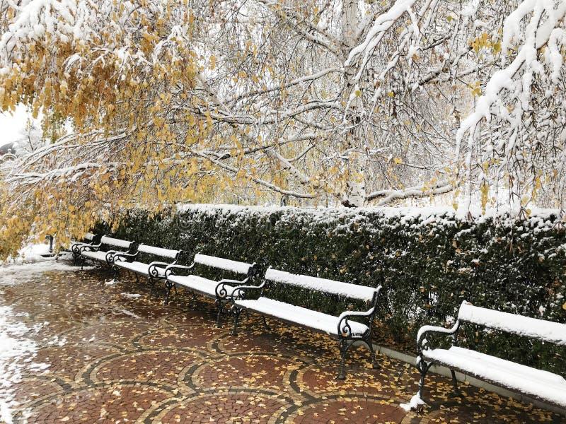 banchi innevati di legno nell'inverno Sofia fotografie stock libere da diritti