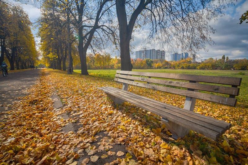 Banchi per resto nel parco di autunno godere della bellezza dell'autunno immagine stock libera da diritti