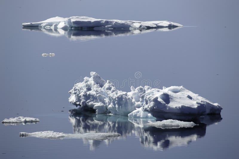 Banchise galleggianti di ghiaccio fotografia stock libera da diritti