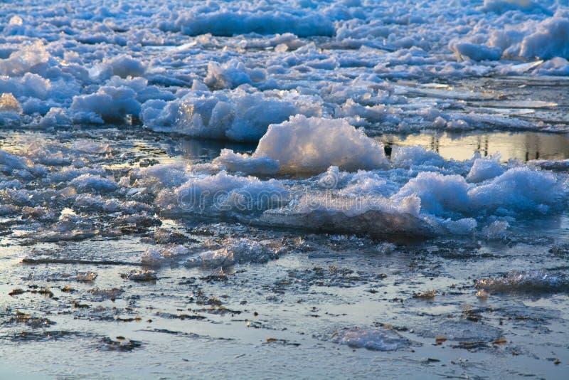 Banchise galleggianti di ghiaccio immagine stock