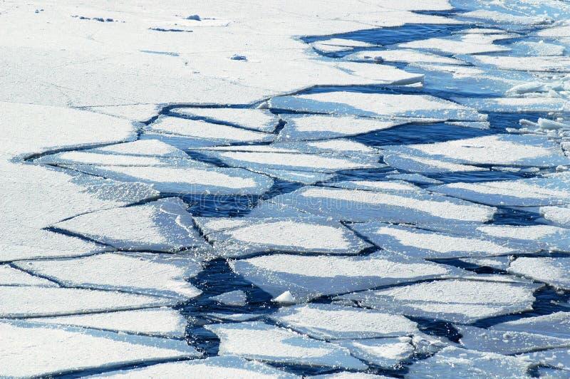 Banchise galleggianti di ghiaccio schiacciate immagine stock libera da diritti
