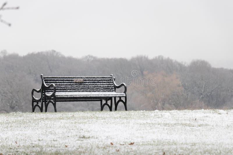 Banco coberto de neve em um parque foto de stock royalty free