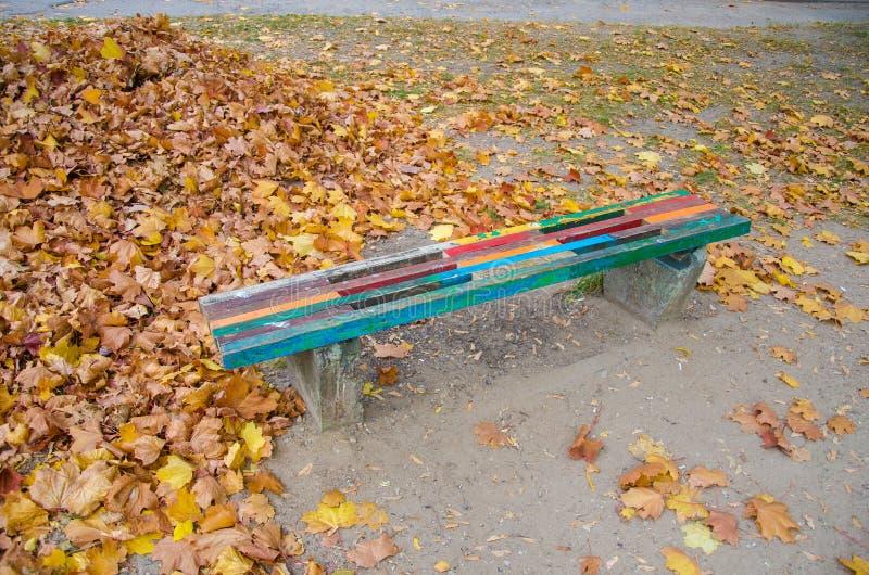 Banco colorido de la calle del otoño, banco Banco cerca de la calle en un día soleado del otoño La ca?da ha venido imágenes de archivo libres de regalías