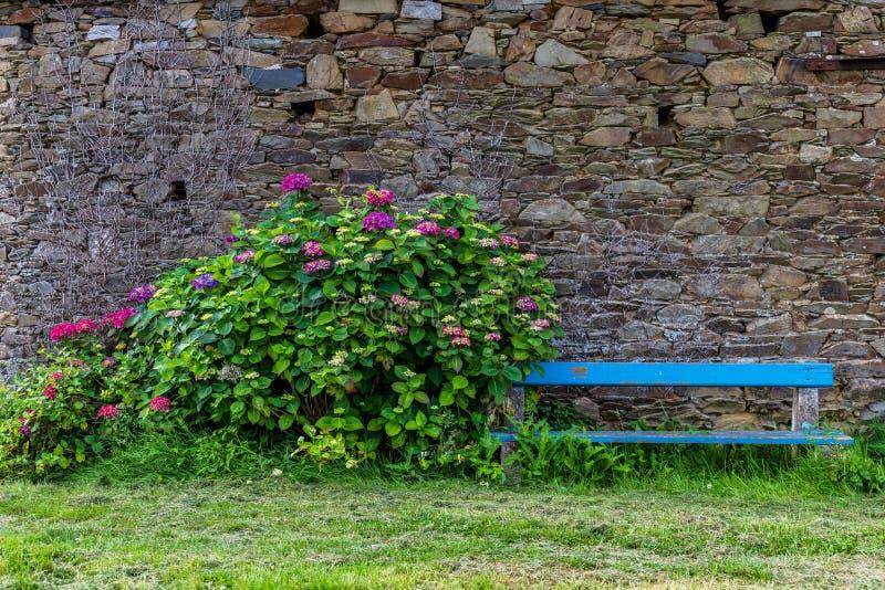 Banco com as flores com fundo da parede de pedra imagem de stock royalty free