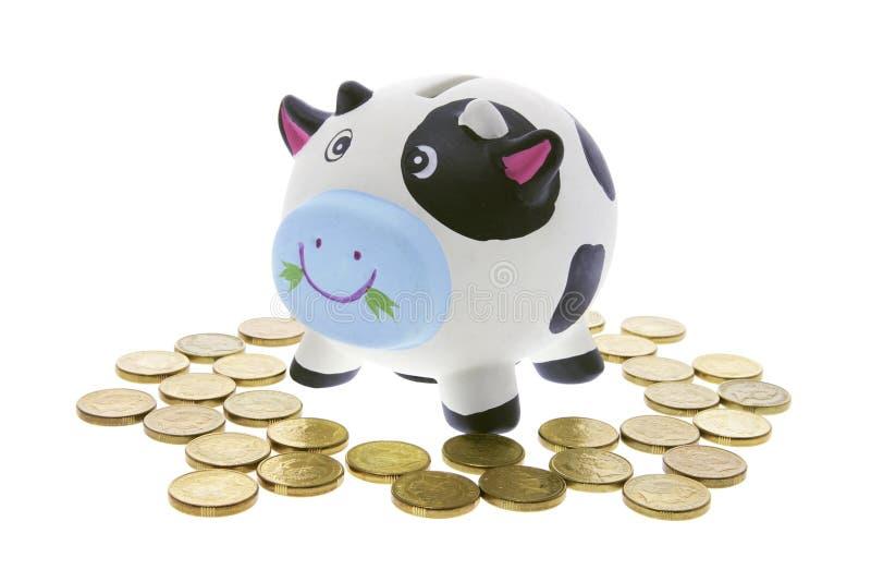 Banco de economia da vaca foto de stock royalty free