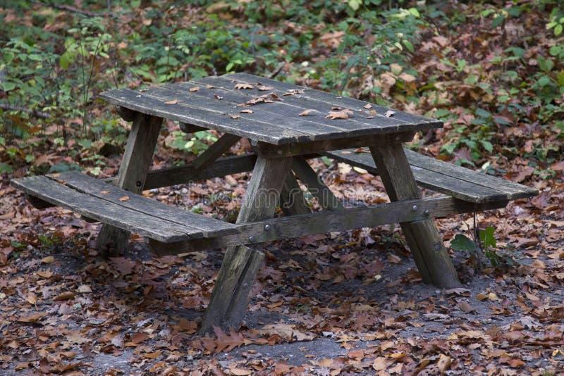 Banco de la comida campestre en un bosque del otoño fotos de archivo libres de regalías
